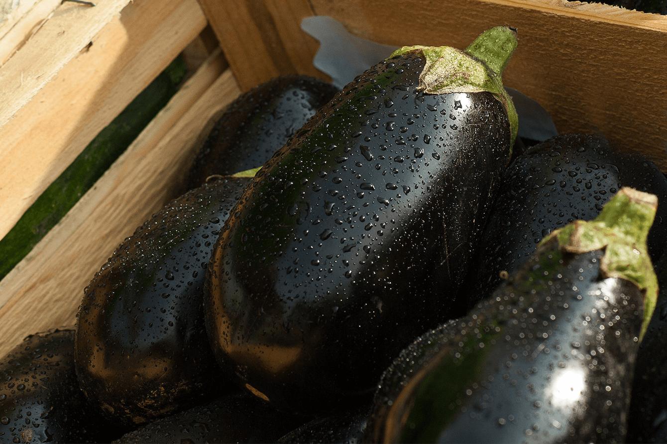 arctic - ce legume si fructe trebuie sa conservi 4