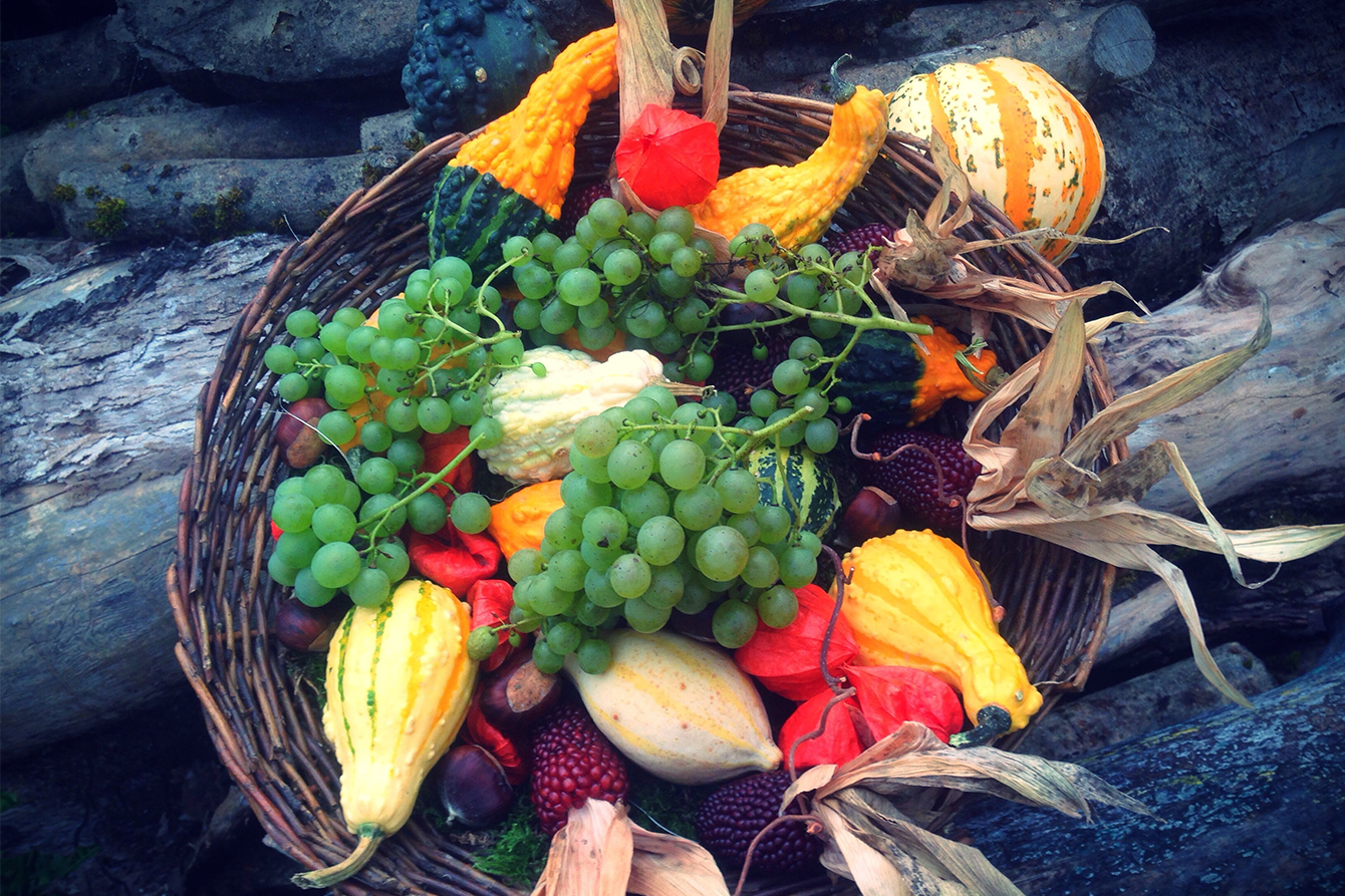 arctic - fructe si legume de toamna