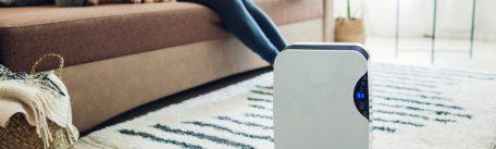 Cum obtii un nivel optim al umiditatii din casa  – metode la indemana ta, pentru un aer curat
